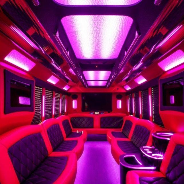 image taken from inside a luxury van